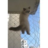 Empresa de instalar a rede proteção de janela no Parque do Pedroso